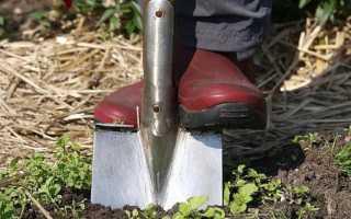 На что обратить внимание при покупке лопаты для копания