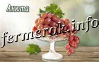 Виноград Анюта столовый сорт: что нужно знать, описание сорта, отзывы