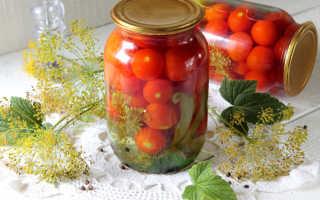 Помидоры с виноградными листьями – рецепты на зиму: соленые и маринованные помидоры в листьях винограда