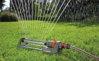 Применение распылителей для полива огорода