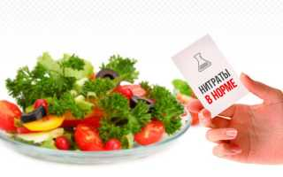 Как проверить нитраты в арбузе простыми методами