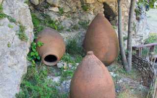 Красное грузинское вино: что нужно знать, описание сорта, отзывы
