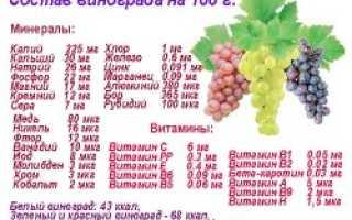 Сорта винограда для производства вин: описание сорта с фото, отзывы, посадка и уход