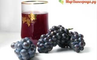 Виноградный сок: целительные свойства, рецепты, противопоказания