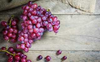 Виноград Шахиня Ирана: что нужно знать о нем, описание сорта, отзывы
