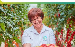Садовый измельчитель для травы и веток: как выбрать