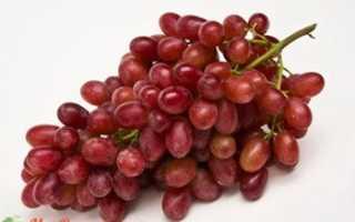 Виноград Кримсон Сидлис (Crimson Seedless): что нужно знать о нем, описание сорта, отзывы