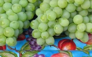 Виноград валек: что нужно знать о нем, описание сорта, отзывы