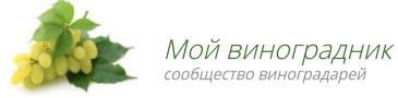 moyvinogradnik.ru
